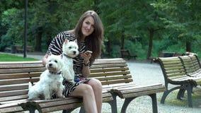 Mujer y dos perros de animales domésticos hermosos que se sientan en banco y que usan smartphone almacen de metraje de vídeo