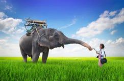 Mujer y elefante Fotos de archivo