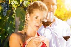 Mujer y hombre en vino de consumición del viñedo Imagenes de archivo