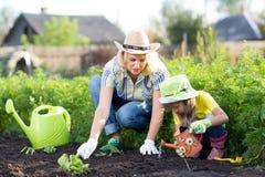 Mujer y muchacha, madre e hija, cultivando un huerto Fotografía de archivo libre de regalías