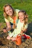 Mujer y niña que plantan plantas de semillero del tomate Imágenes de archivo libres de regalías