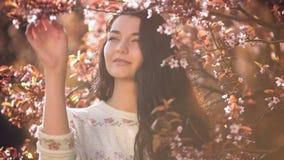 Mujer y pétalos que caen de Sakura en la naturaleza almacen de video