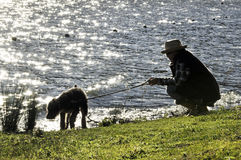Mujer y perro casero de la silueta que caminan por el lago fotografía de archivo libre de regalías