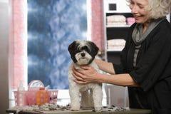 Mujer y perro en el salón de la preparación del animal doméstico foto de archivo libre de regalías