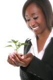 Mujer y planta bonitas del crecimiento Imagen de archivo