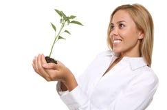 Mujer y planta bonitas del crecimiento Imagen de archivo libre de regalías