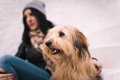 Mujer y su perro Imagenes de archivo