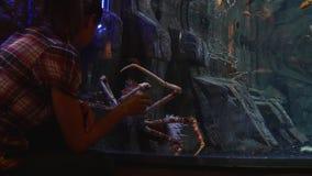 Mujer y un cangrejo gigante almacen de video