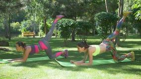Mujeres aptas del Active que ejercitan en las esteras de la yoga al aire libre almacen de metraje de vídeo
