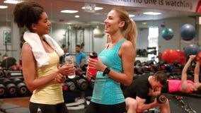Mujeres aptas que charlan en el gimnasio metrajes