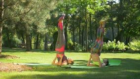 Mujeres aptas que hacen ejercicio del shoulderstand de la yoga al aire libre almacen de video