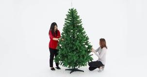 Mujeres asiáticas que preparan el árbol de navidad almacen de video