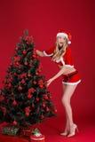 Mujeres atractivas en la ropa de Santa Claus cerca del árbol de navidad Imagen de archivo