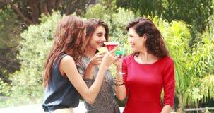 Mujeres atractivas que tienen una bebida al aire libre almacen de video
