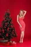 Mujeres atractivas rubias en el vestido rojo cerca del árbol de navidad Fotografía de archivo