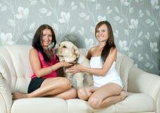 Mujeres con el perro perdiguero de Labrador en el sofá Foto de archivo