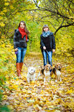 Mujeres con los perros foto de archivo libre de regalías
