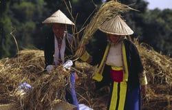 Mujeres de Hmong   Foto de archivo libre de regalías