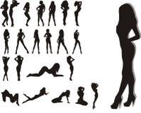 Mujeres de la belleza stock de ilustración