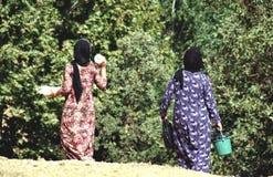 Mujeres de la remolque en su granja Fotografía de archivo