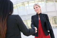 Mujeres de negocios que sacuden las manos Imagenes de archivo