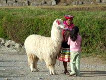 Mujeres de Peruan con el lama Foto de archivo libre de regalías