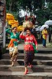 Mujeres del Balinese que llevan la caja ceremonial con ofrendas, Ubud Imágenes de archivo libres de regalías