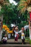 Mujeres del Balinese que llevan la caja ceremonial con ofrendas, Ubud Imagen de archivo
