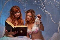 Mujeres del duende con un libro y una linterna Foto de archivo