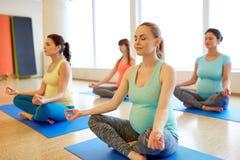 Mujeres embarazadas felices que meditan en la yoga del gimnasio Fotografía de archivo libre de regalías