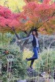 Mujeres en el bosque del otoño Imágenes de archivo libres de regalías