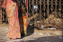 Mujeres en sari colorida que caminan en Karni Mata Temple, Deshnok, adentro foto de archivo