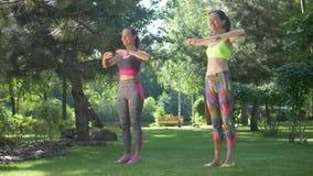 Mujeres felices del ajuste que hacen los pilates que entrenan en parque almacen de video
