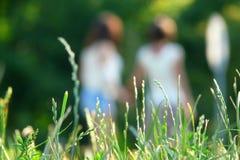 Mujeres jovenes felices que saltan sobre hierba verde Fotografía de archivo