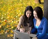 Mujeres jovenes hermosas que hojean en el ordenador portátil en un parque Imágenes de archivo libres de regalías