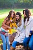 Mujeres jovenes hermosas que usan los teléfonos celulares Fotografía de archivo