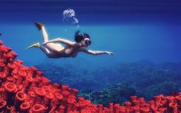 Mujeres jovenes que nadan Fotografía de archivo