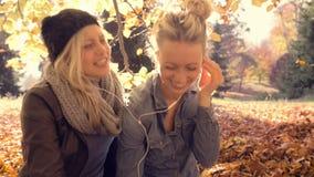Mujeres jovenes que se relajan con el amigo en el parque almacen de metraje de vídeo