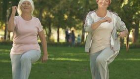 Mujeres jubiladas activas que hacen la gimnasia de la mañana en el parque, calentando ejercicios almacen de metraje de vídeo