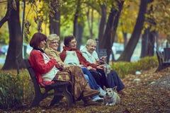 Mujeres jubiladas en un banco Imágenes de archivo libres de regalías