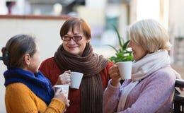 Mujeres maduras que beben té Fotos de archivo libres de regalías