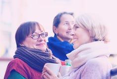 Mujeres maduras que beben té Imagen de archivo libre de regalías