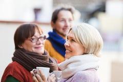 Mujeres mayores que beben té en el balcón Imagen de archivo libre de regalías
