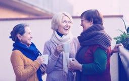 Mujeres mayores que beben té en el balcón Imagenes de archivo