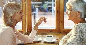 Mujeres mayores que hablan el uno al otro en el café 4k almacen de video