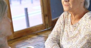 Mujeres mayores que hablan el uno al otro en el café 4k metrajes