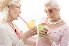 Mujeres mayores que prueban la bebida del alcohol Imagen de archivo