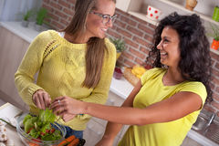 Mujeres modernas, el cocinar y diversión en la cocina Fotografía de archivo libre de regalías