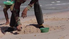 Mujeres negras pobres tailandesas de los tugurios comunes de las imágenes de vídeo que buscan cáscaras almacen de metraje de vídeo