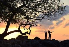 Mujeres que bailan puesta del sol del árbol Imagen de archivo libre de regalías